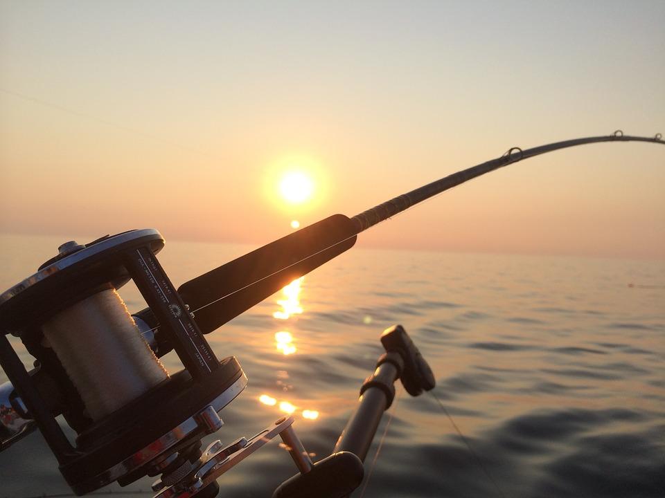 fishing- charters
