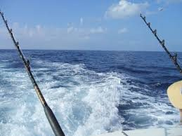sportfishing rod
